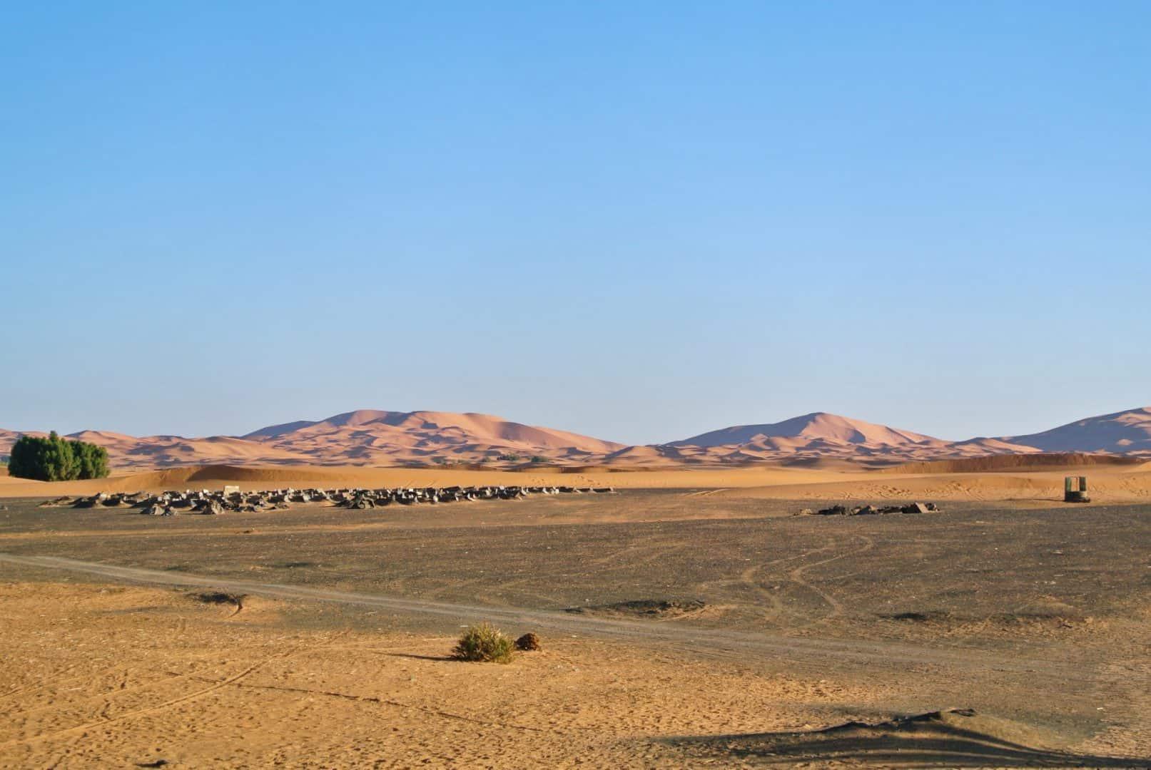 merzouga desert travel guide